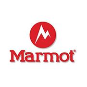 marmot/土拨鼠